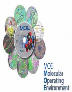 Molecular Operating Environment 2019.0102