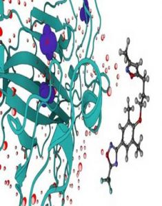 Download Molecular Dynamic Simulations for Drug Discovery