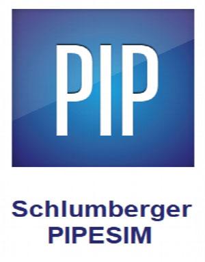 Download Schlumberger PIPESIM 2020.1.717 + Crack
