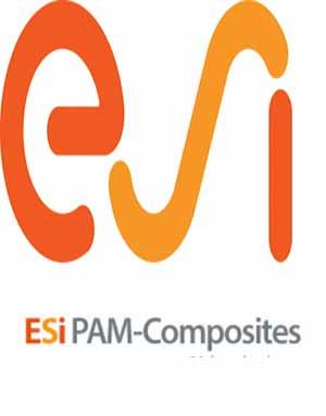 Download ESI PAM-Composites